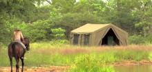 Vivre un safari authentique avec safarivo.com